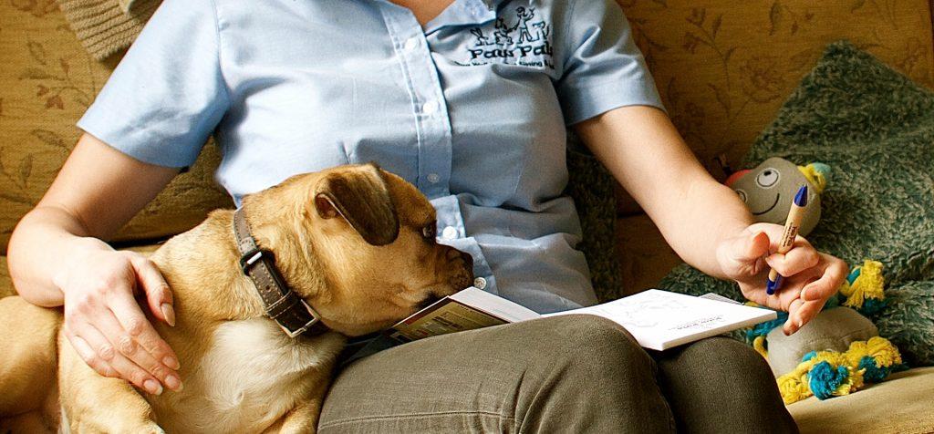 Paw Pals Dog Walking And Grooming Pet Sitting