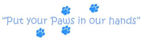 Paw Pals Pet Sitting Pet Care Services